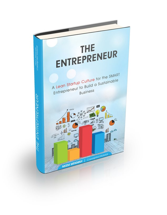 The Entrepreneur - A Lean Startup Culture for the Smart Entrepreneur to Build a Sustainable Business